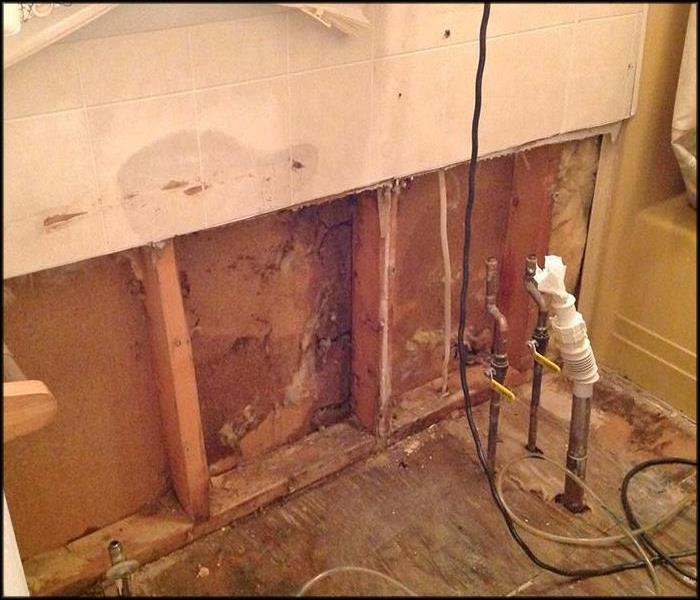 Hidden Mold in Bathroom After