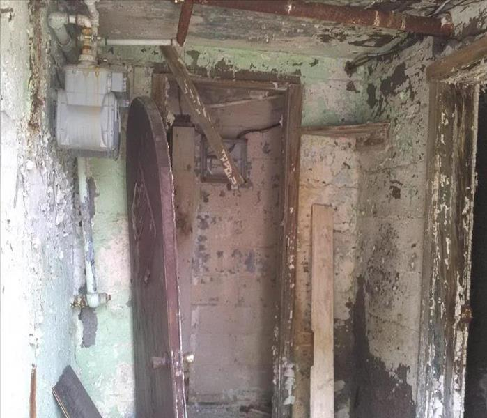 Mold Damage in Upper Darby, PA After