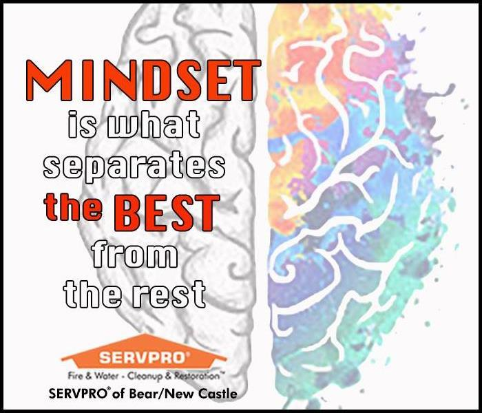 "Text of the quote ""Mindset is what separates the best from the rest"" on a colorful brain background"