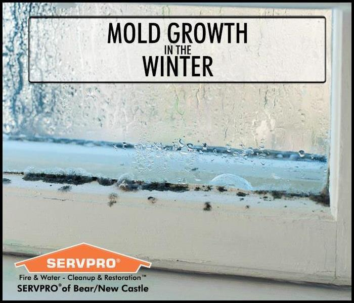 Mold growth on a window covered with condensation