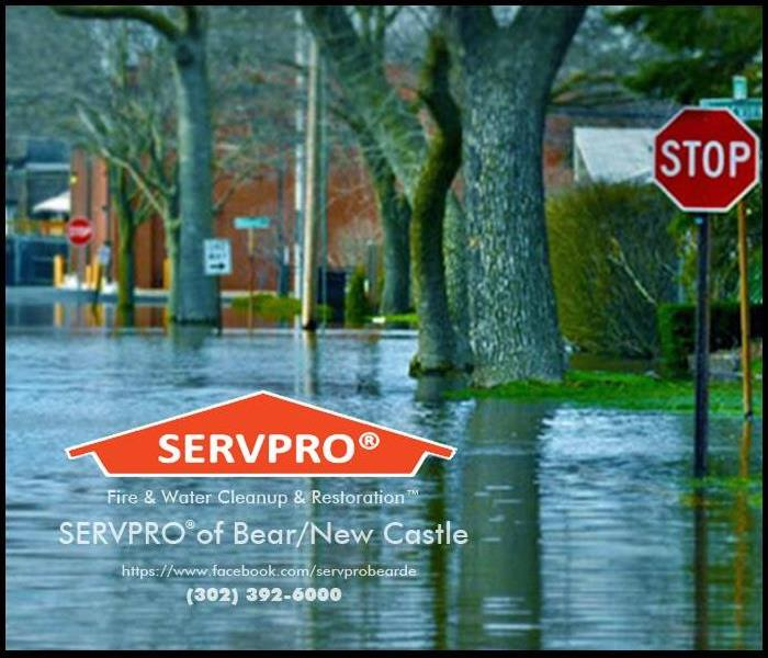 Storm Damage Tips to Help You After a Storm or Flood in Delaware City, DE