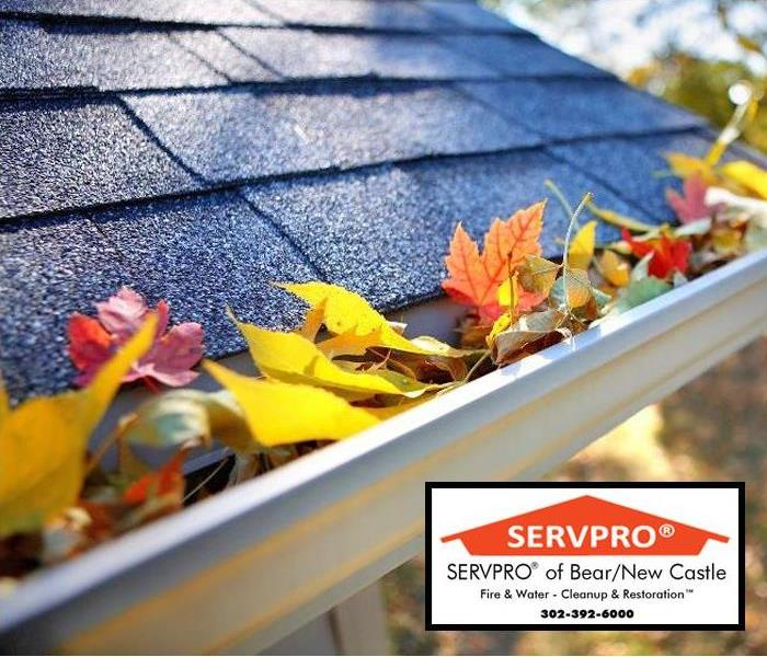 Water Damage Why Is Fall Gutter Cleaning Important?