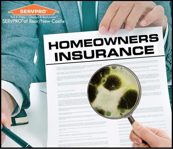 Mold Remediation Mold and Insurance Coverage