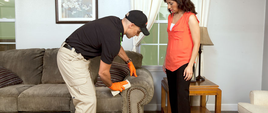 Bear, DE carpet upholstery cleaning